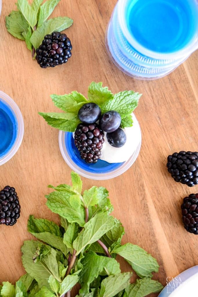 blackberry mint jello shot