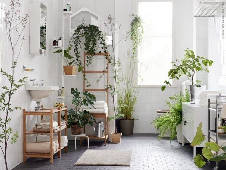 Decorar Con Plantas De Interior La Casa Revista Liliana