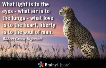 robertgreeningersoll118442