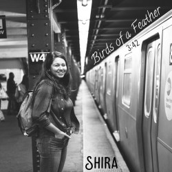 Shira - Birds of a Feather - SINGLE art