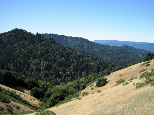 Gorgeous views on Skyline Ridge, image from July 2009