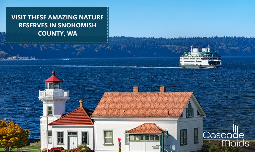 Visit These Amazing Nature Reserves in Snohomish County, WA