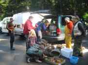 collecting mushrooms