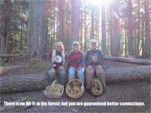 There is no wi-fi in the forest....