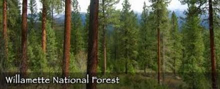 willamette-national-forest