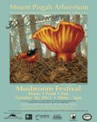 festival-poster-2011