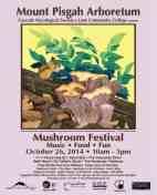 festival-poster-2014