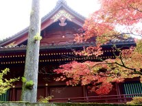 The fall colors pair well with the lacquered paint of Tōshō-gū Shrine