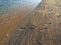 Footprints in the pink coral sand.