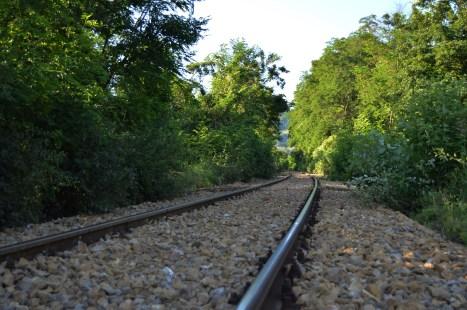 Cu trenul, (aproape) Maramures