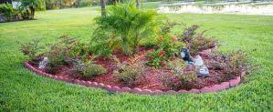 Orientação Técnica em jardinagem - Cascalheira Garden - Jardinagem e Paisagismo Camaçari