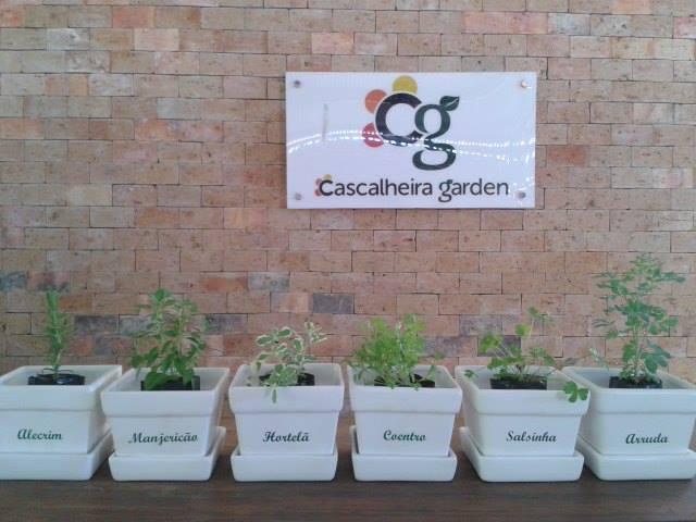 Execução de Projetos - Cascalheira Garden - Jardinagem e Paisagismo Camaçari