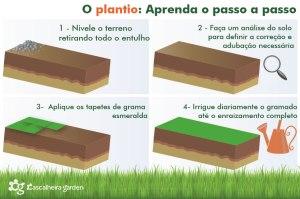 o plantio aprenda passo a passo cascalheira garden - Cascalheira Garden - Jardinagem e Paisagismo Camaçari
