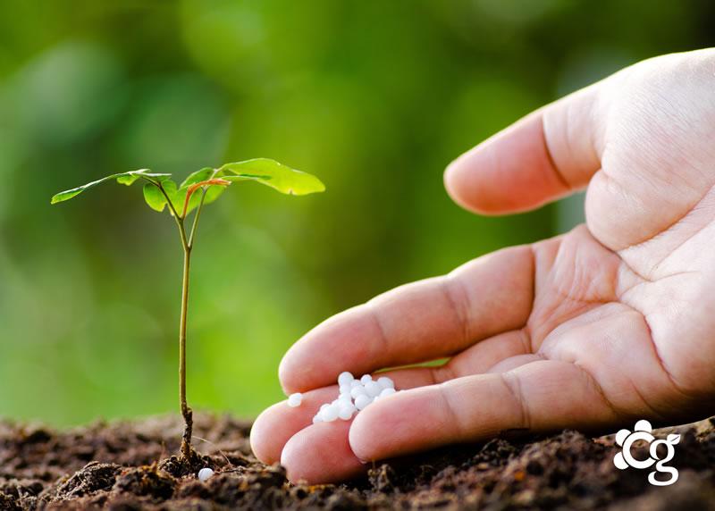 Adubos e Fertilizantes para Jardim - Cascalheira Garden - Jardinagem e Paisagismo Camaçari