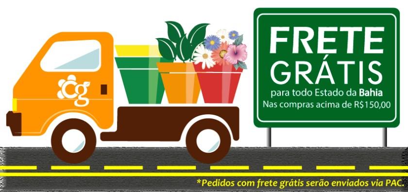 Frete Grátis para todo estado da Bahia - Cascalheira Garden - Jardinagem e Paisagismo Camaçari