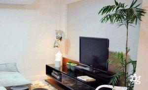 palmeira-chamaedorea-vaso-ornamentado-dentro-de-casa1 - Cascalheira Garden - Jardinagem e Paisagismo Camaçari