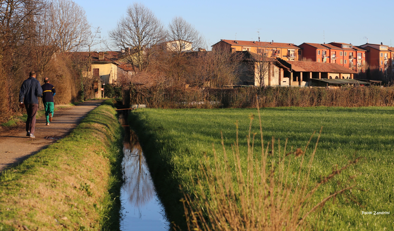 I Fontanili e le Marcite nella storia del Territorio di Porta Vercellina