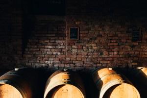 Degustazione vini e prodotti nelle langhe