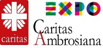 Acqua Fuoco Terra Aria - Caritas Ambrosiana Expo
