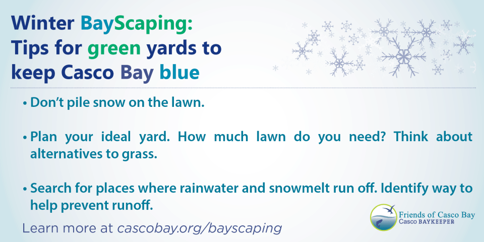 Winter BayScaping Tips
