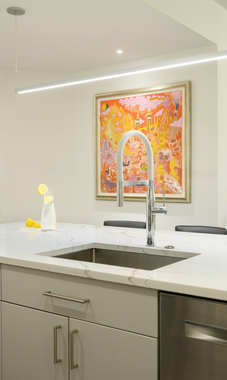 kitchen renovations in washington, dc has a drop-in stainless-steel single bowl kitchen island