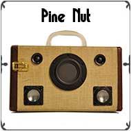 pinenut-border