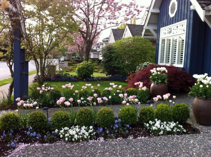 amenajarea curtii din fata casei cu ajutorul florilor