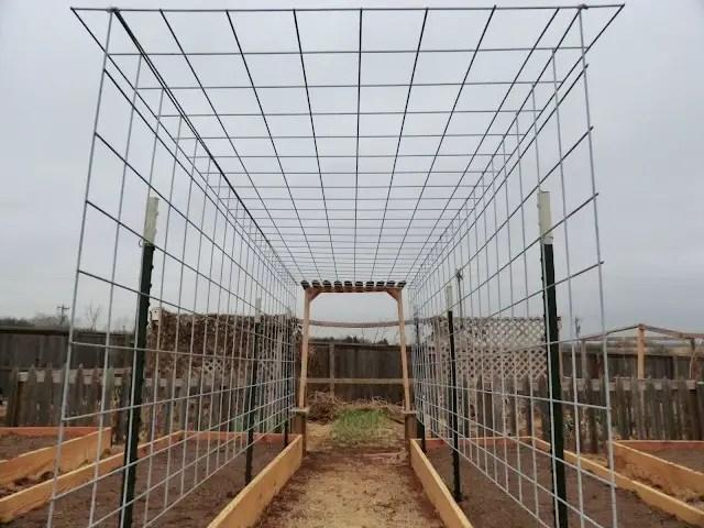 Constructia unei bolte de vie - How to build a grape vine support the natural roof ...