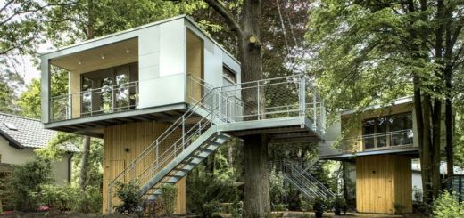 Casa din copac in Berlin