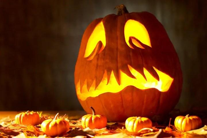 decoratiuni din dovleci Pumpkin decorating ideas 12