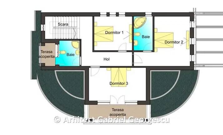 proiecte de case in stil conac mansion house plans 9