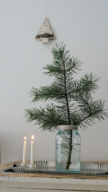 decoratiuni din crengi de brad Christmas fir branches decorations 15