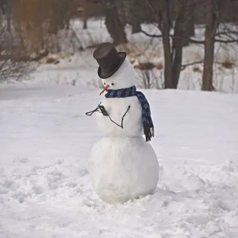 cei mai frumosi oameni de zapada Most creative snowmen 17