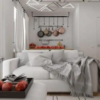 apartamente sub 30 de metri patrati mici