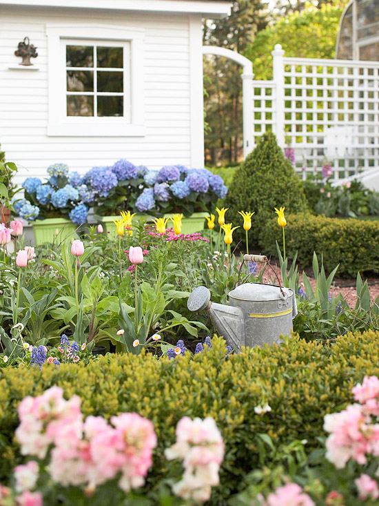 aranjamente de flori in gradina Garden floral arrangements 2