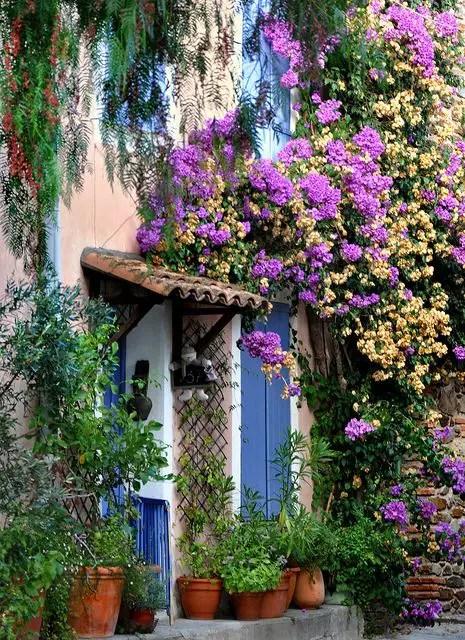 gradini in stil francez frech style gardens 3