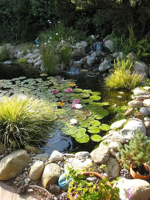 iazuri de gradina Garden pond design ideas 8
