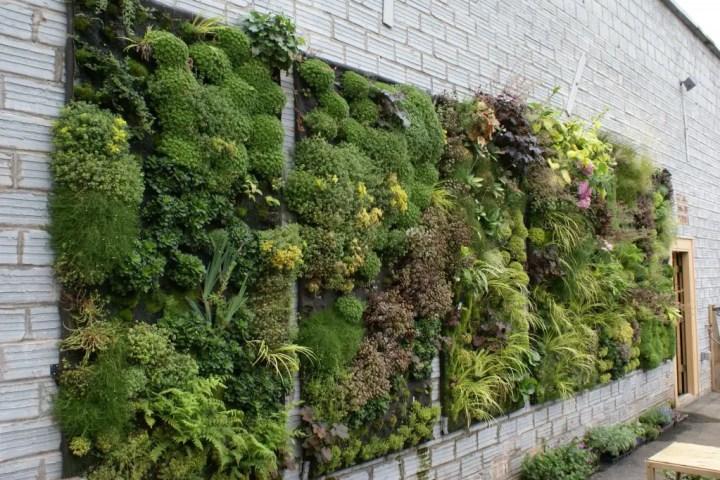 Idei pentru amenajarea unei gradini de 50 de metri patrati 50 square meter garden design ideas 16