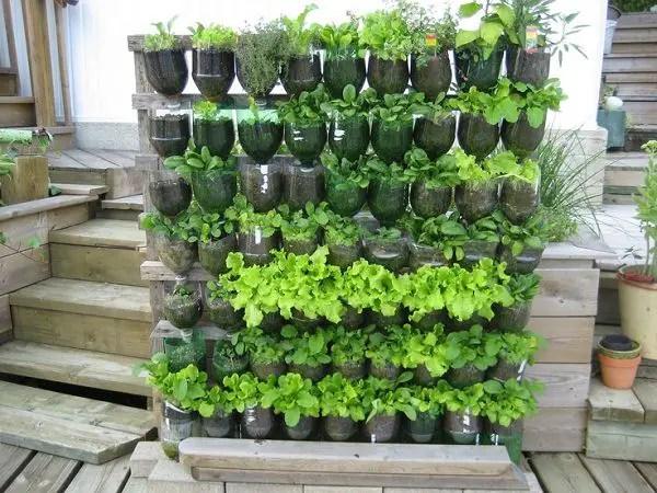 gradini verticale din peturi Plastic bottle vertical garden ideas 6