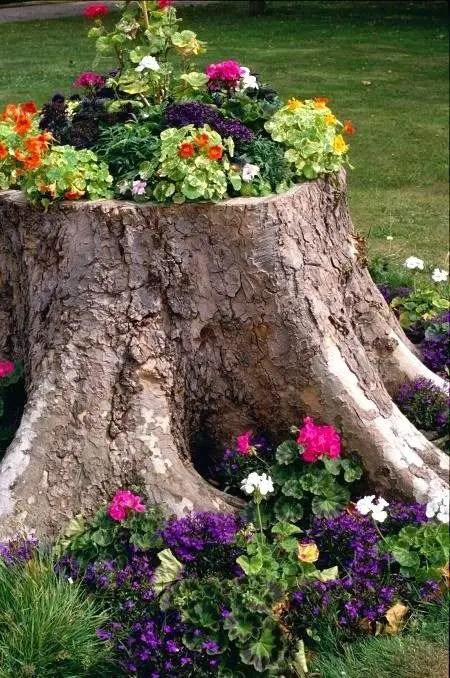 idei de amenajare a gradinii cu flori flower garden landscape ideas 5