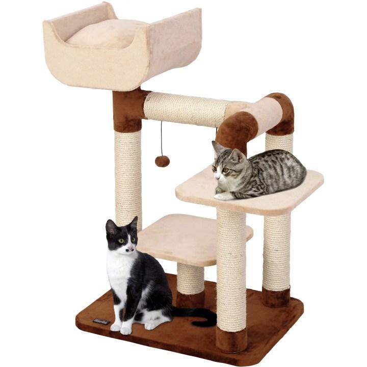 emag catei pisici 4