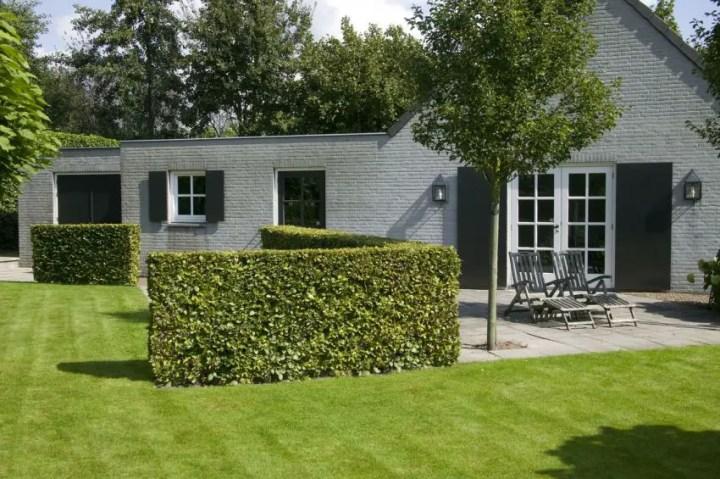 garduri modulare cu plante Green fencing ideas 3