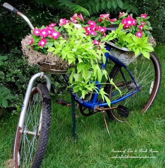 gradini rustice cu flori Rustic flower gardens 12