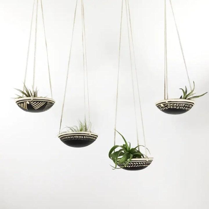 decoruri elegante cu plante care cresc fara pamant Elegant ways to display air plants in your home 8