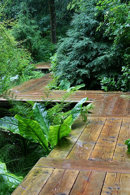 alei de gradina din lemn Garden wooden walkways 18