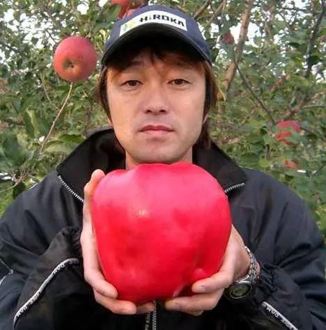 cele mai mari fructe si legume din lume mar