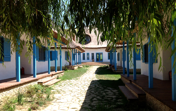 case in Delta Dunarii