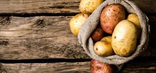 pastrarea cartofilor sub pamant