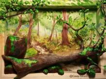 woods-sb-caseyg