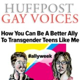 Ally blog huff post